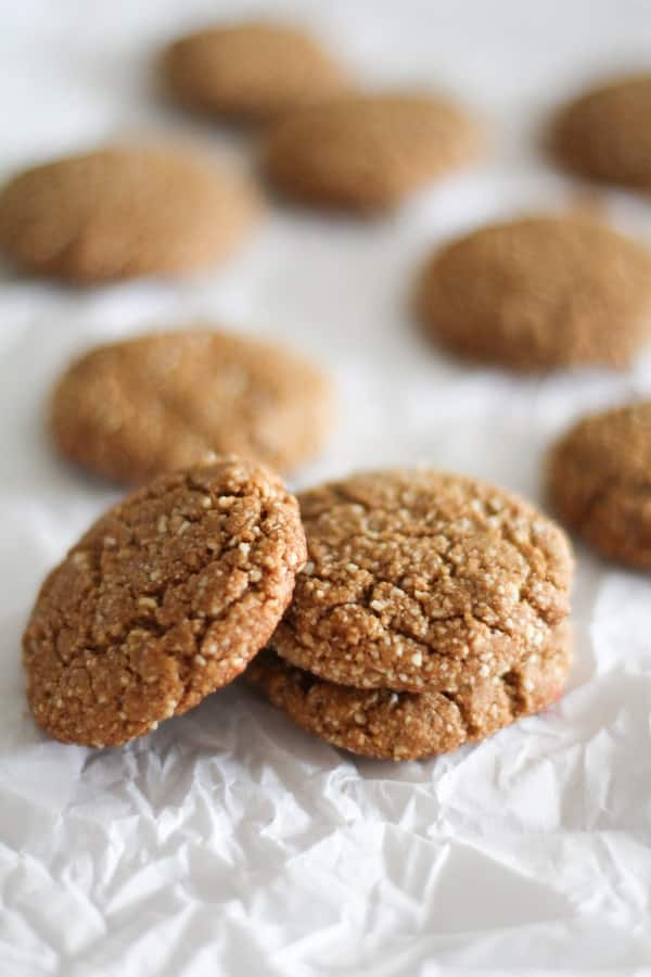 A photo of three paleo gingerbread cookies in focus.