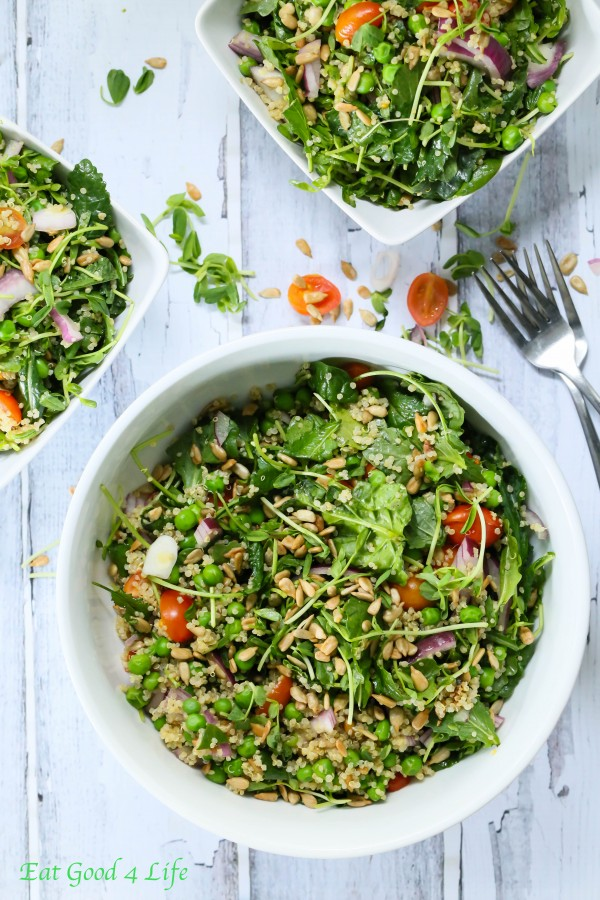 Multiple bowls of quinoa kale salad.