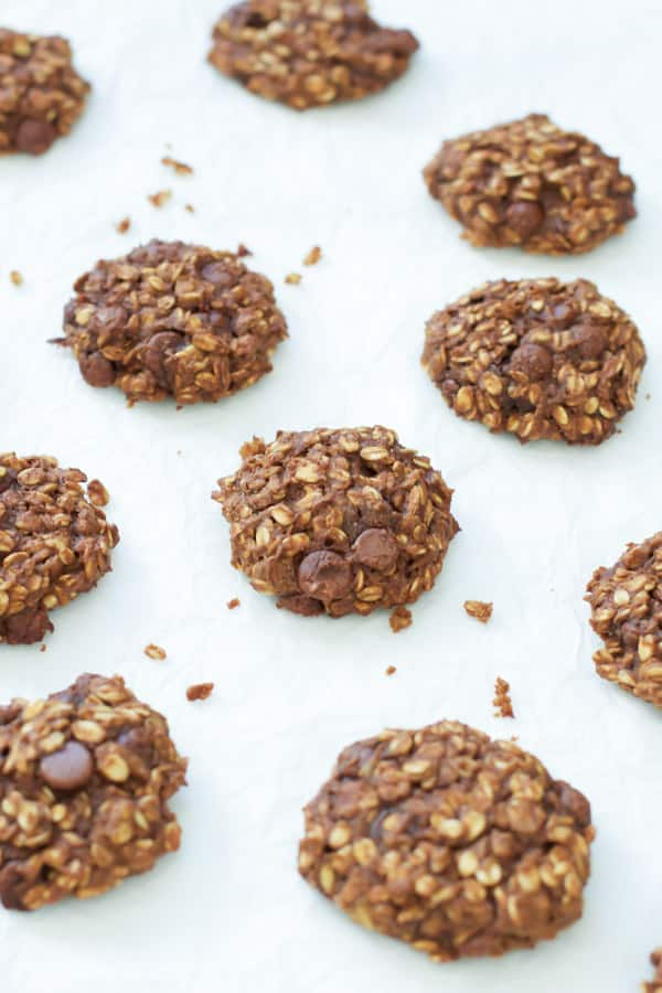 pumpkin oatmeal cookies primavera kitchen recipe