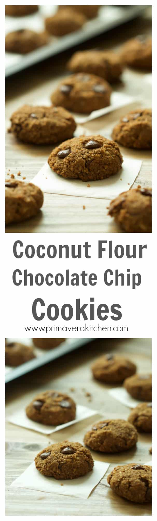 gluten-free-coconut-flour-chocolate-chip-cookies - Gluten-free Coconut Flour Chocolate Chip Cookies - These Paleo, Gluten and dairy-free Coconut Flour Chocolate Chip Cookies are the best treat because they have no dairy and refined sugar, but yet very delicious and soft.