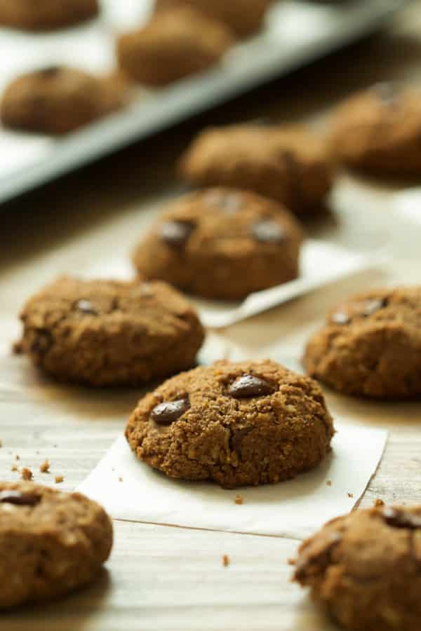 gluten-free-coconut-flour-chocolate-chip-cookies- Gluten-free Coconut Flour Chocolate Chip Cookies - These Paleo, Gluten and dairy-free Coconut Flour Chocolate Chip Cookies are the best treat because they have no dairy and refined sugar, but yet very delicious and soft.