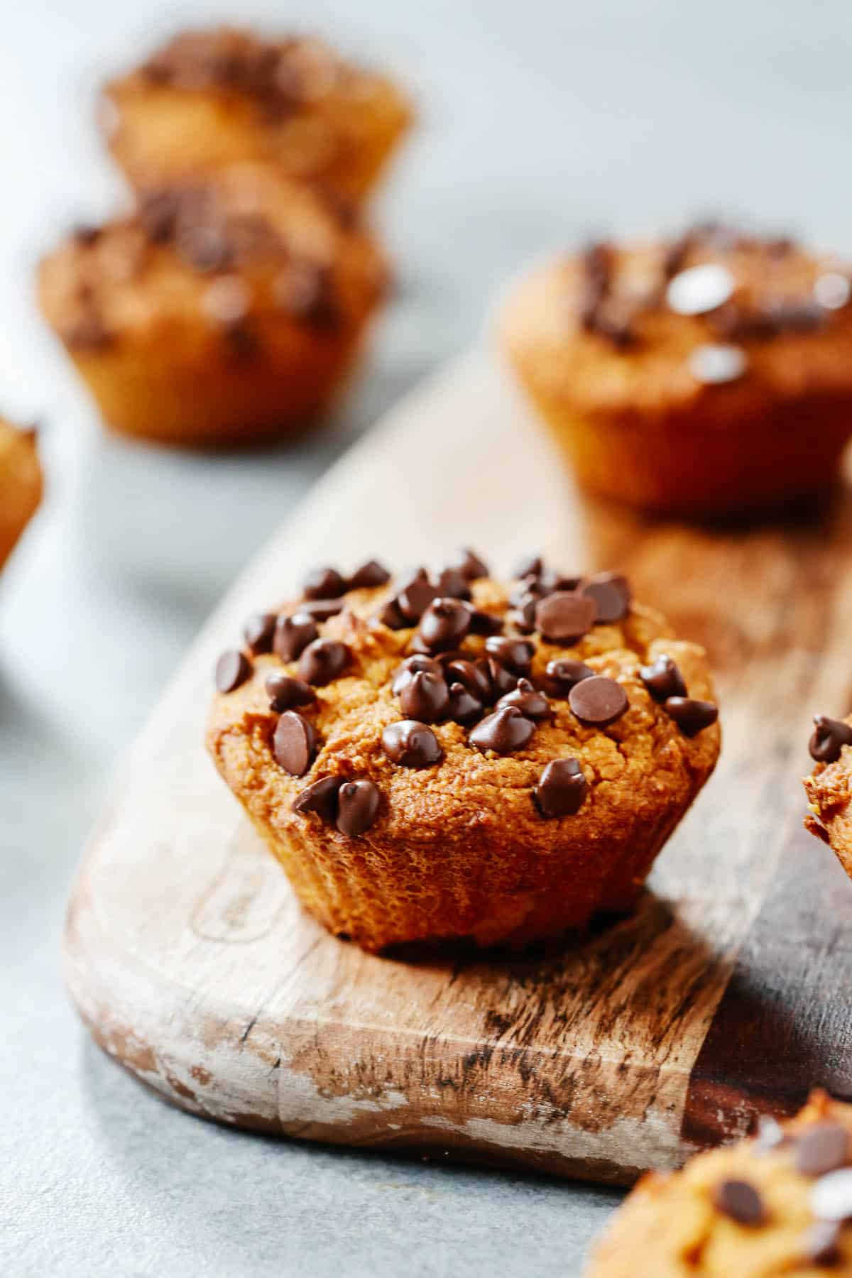 close up of healthy pumpkin chocolate chip muffin
