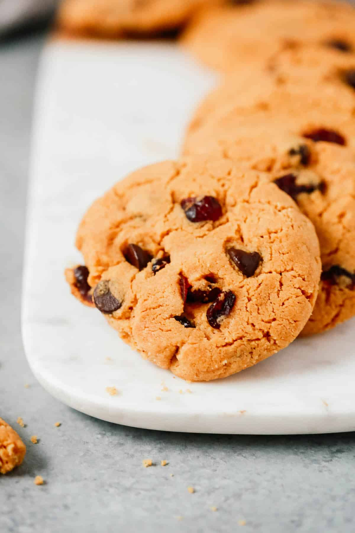Close up of a cranberry chocolate chip cookie.