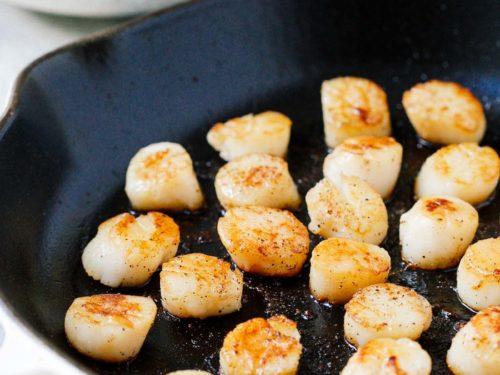 closeup of seared scallops