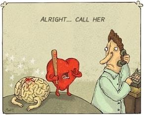 לב מרביץ למוח
