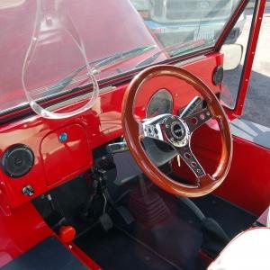 Red Moke Steering