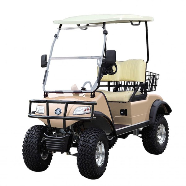 gold forester 2 person golf car