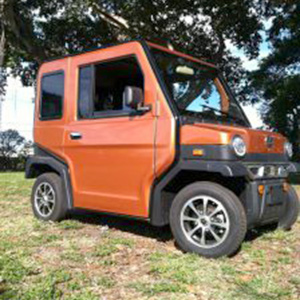 orange revolution golf car