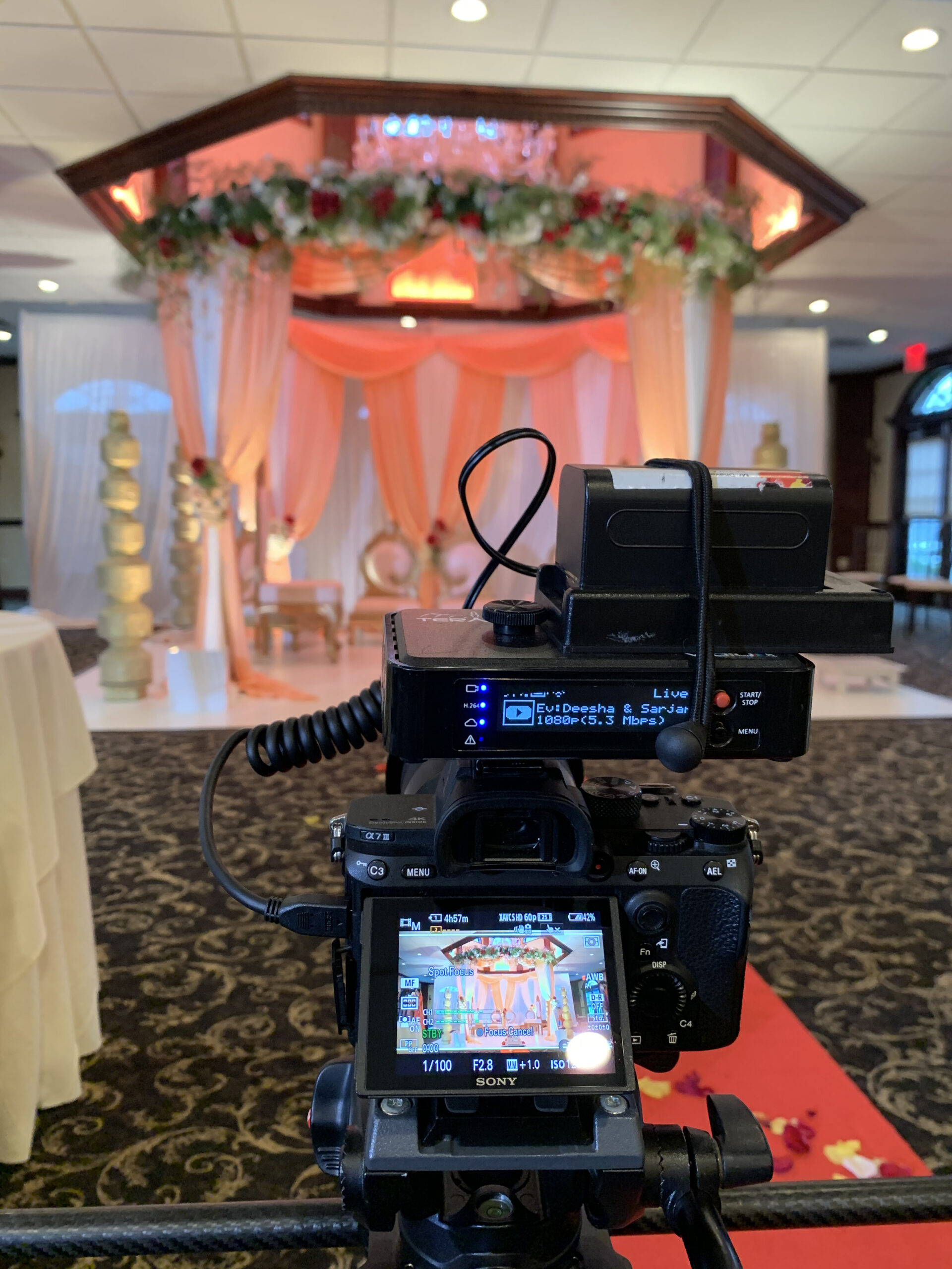 Indian wedding live streaming