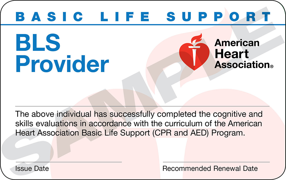 What Is A Bls Card For The Healthcare Provider Rezzasite