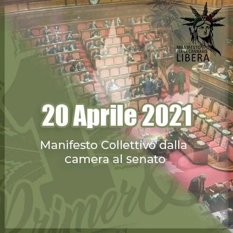 20 Aprile 2021, Manifesto Collettivo dal Senato alla Camera
