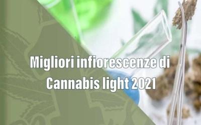 Migliori infiorescenze di Cannabis light 2021
