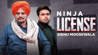 License- by Ninja (2016)