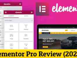 Elementor Pro Review (2020)