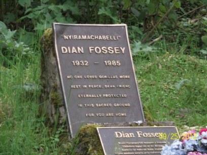 4 Days Gorilla Safari in Rwanda with Dian Fossey Hike