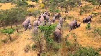 Akagera National Park , Rwanda safari