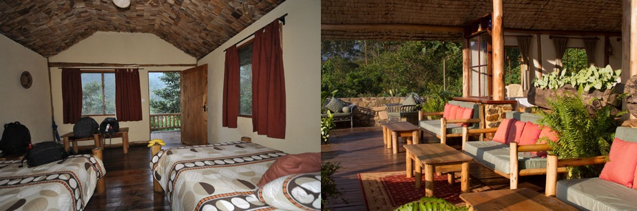Engagi Lodge  - accommodation in Bwindi np