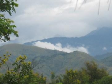 Rwenzori snow capped mountains