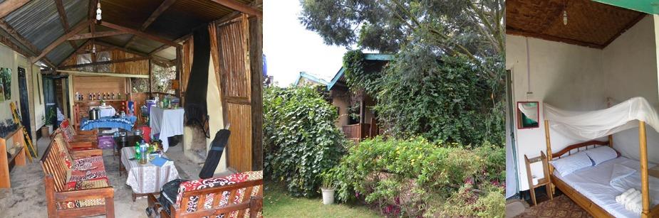 Ruhija Community Rest Camp - accommodation in bwindi np