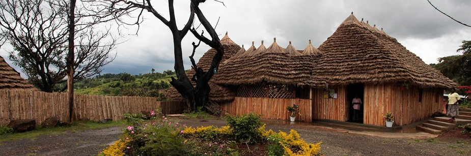 Sipi Falls Resort - accommodation in sipi area