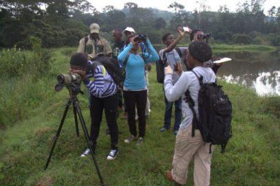 birding-uganda safari
