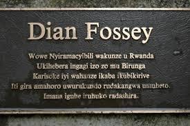 dian Fosey tomb