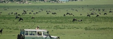 game-drivein-Serengeti National Park