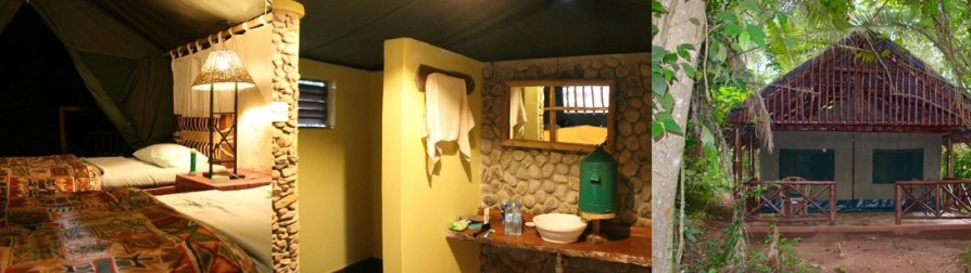 kibale-forest-camp