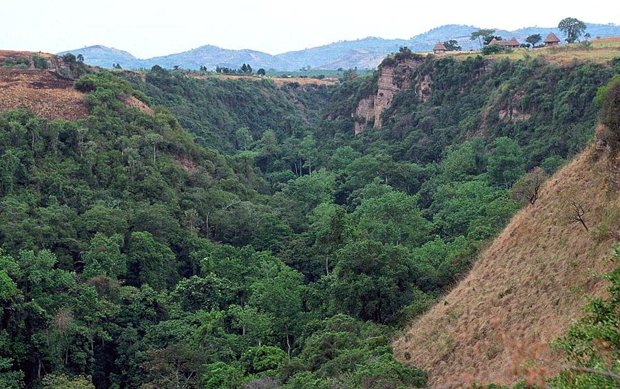 kyambura gorge , uganda safaris
