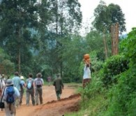 nature walks - uganda