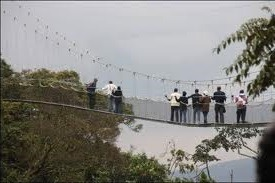 canopy walk nyungwe