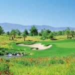 Golf - The Desert Course