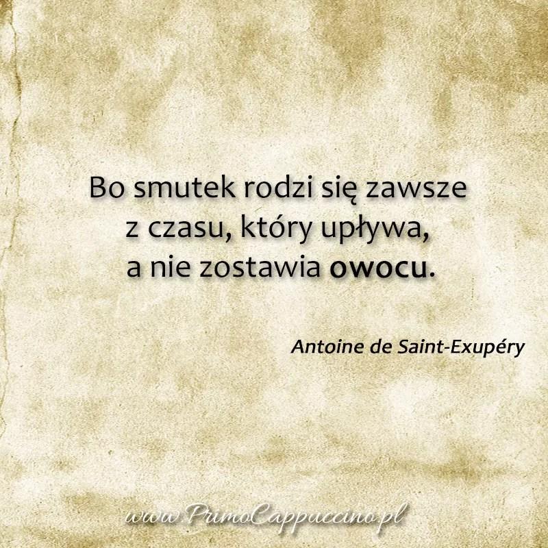 życie bez telewizji, Bo smutek rodzi się zawsze z czasu, który upływa, a nie zostawia owocu, cytaty Antoine de Saint-Exupéry, cytaty o efektach, sukcesie