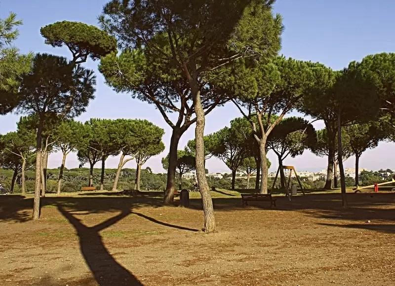 Rzym, Primo Cappuccino, Villa Doria Pamphilj, parki Rzymu, wgórza Rzymu, co robić w Rzymie z dziećmi, Janikulum, Gianicolo