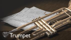 trumpet lessons in minneapolis saint paul Minnesota