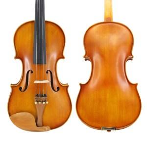 Strumenti a corde 3000 violino