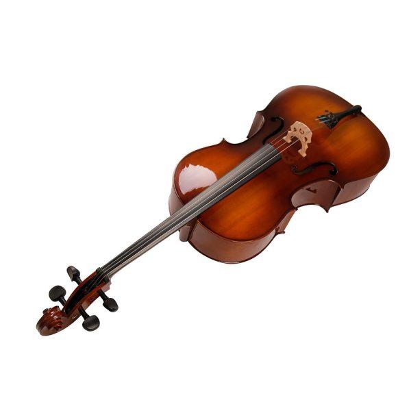 Strumenti a corde 205 cello