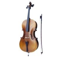 Strumenti a corde 100 cello