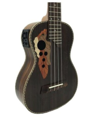electric rosewood ukulele