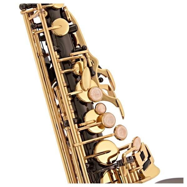 Prince Student + Series Alto Saxophone