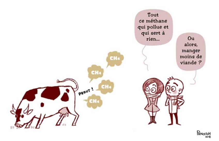 une vache qui pète du méthane, question sur le réchauffement...