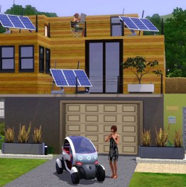 The Real Life Sims – Definite walls