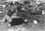 Bugarski zločin u Makedoniji