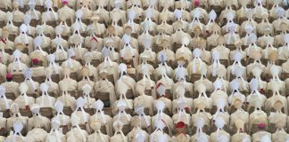 A photo of Catholic bishops during a 2014 canonization.