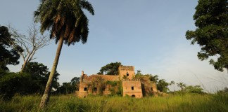 Photo of old colonial fort with palm tree and grass