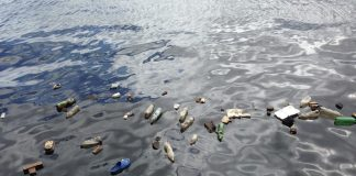 Image of plastic bottles floating in the ocean