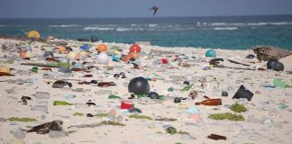 Multi-colored plastic bottles and other trash spread out on a white-sand beach.