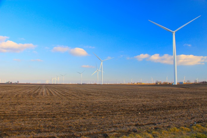 Photograph of a field with wind turbines in the background