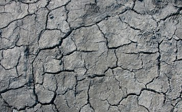 close-up photograph of dried lakebed