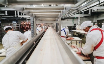 photograph of conveyor line at meat-packing plant